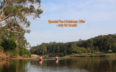 Special offer for Locals